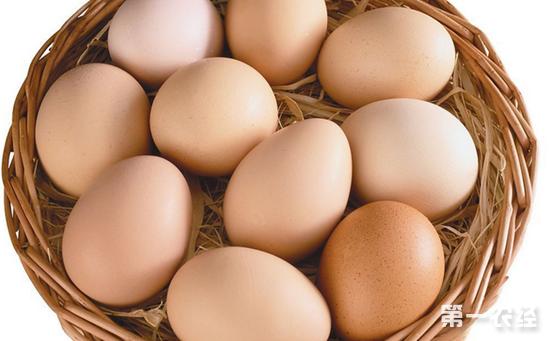 2017年7月13日全国主产区最新鸡蛋价格走势分析:稳中调整