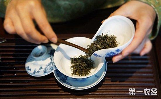 """对于古丈毛尖,""""洗茶""""这一过程必不可少。这是因为,大多数古丈毛尖都是隔年甚至数年后饮用的,储藏越久,越容易沉积脱落的茶粉和尘埃,通过""""洗茶""""达到""""涤尘润茶""""的目的。对于品质比较好的古丈毛尖,""""洗茶""""时注意掌握节奏,杜绝多次""""洗茶""""或高温长时间""""洗茶"""",减少茶味流失。   在惬意的夏日午后,为自己泡一杯古丈毛尖,舒缓身心。古丈毛尖可采用宽壶留茶根闷泡法,中壶&l"""