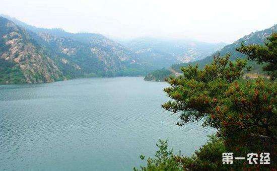 山东:特聘9名专家 保护林木种质资源