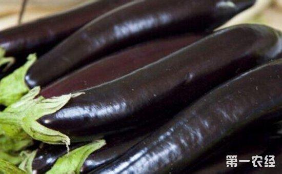 大连:白芸豆检出农药残留  2批次不合格食用农产品被通报