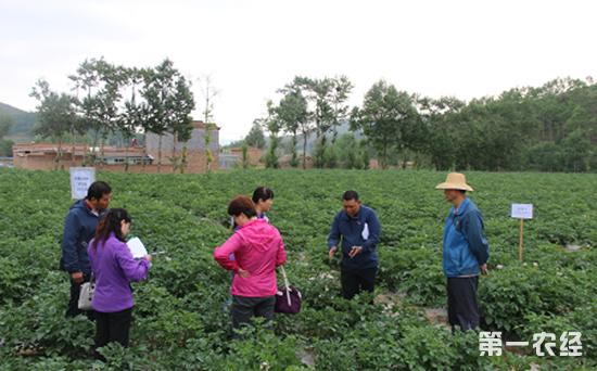 广东一控两减三基本 推进绿色农业发展