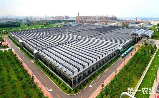 吉林长春:棚膜经济产业带的初步形成