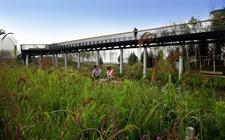 冰城:循环农业开启产业融合新路径