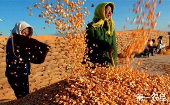 农业部:要做好粮食主产省农业大灾保险试点工作