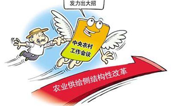 辽宁:深入推进农业供给侧结构性改革