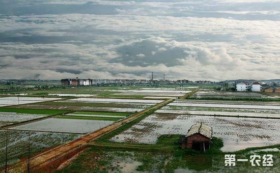 北京:关于进一步做好农村土地承包经营权确权登记颁证工作的通知