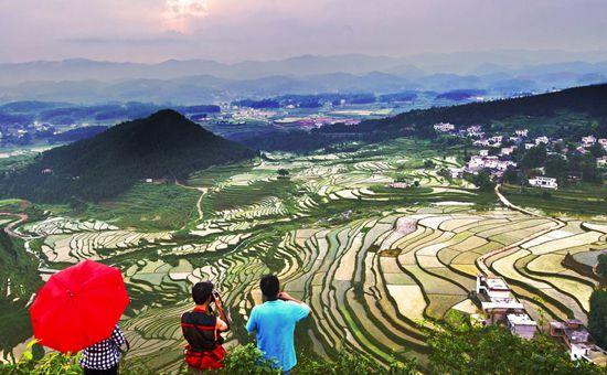湖南祁阳:产业扶贫是核心