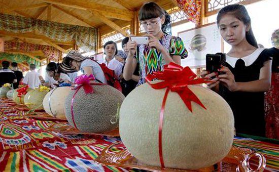 新疆哈密瓜节甜蜜来袭