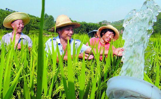 吉林白城:多项举措全力抗旱保收
