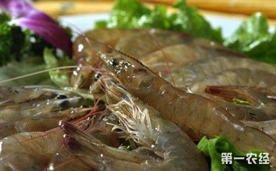 北京:基围虾检出呋喃西林代谢物  8批次不合格食用农产品被通报