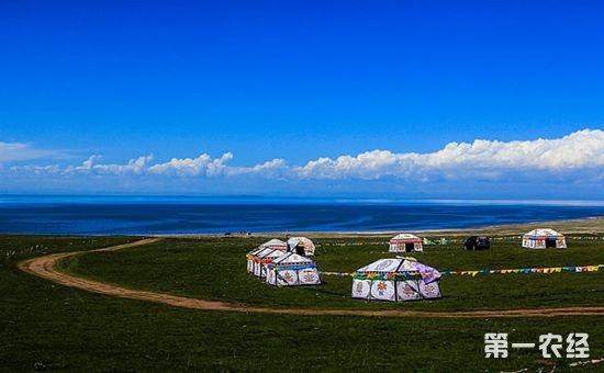 """内蒙古成全国""""粮仓牧场"""""""