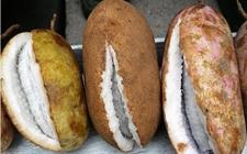 野香蕉价格:野香蕉多少钱一斤?