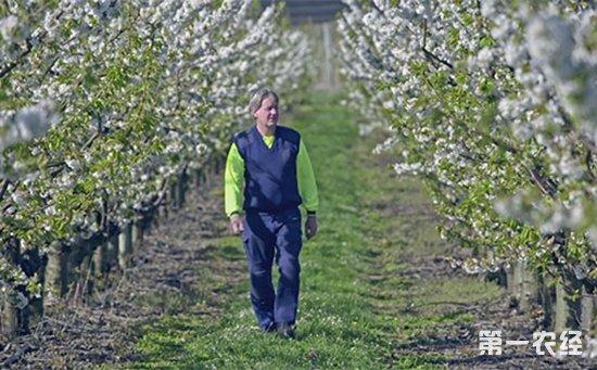 5亿美元农化产品出口澳洲,澳洲市场是蛋糕还是鸡肋?