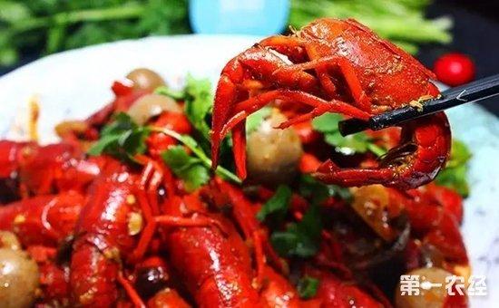 广东中山:8人因食用小龙虾被送医治疗  计卫部门:请慎食小龙虾