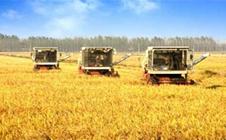 实现农村农业现代化:2017重庆农村产业展览会即将举行