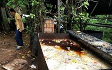 海口:暗藏水库密林 一非法地沟油加工店被查处