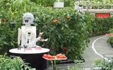 """上虞:重点推进农业上""""机器换人"""""""