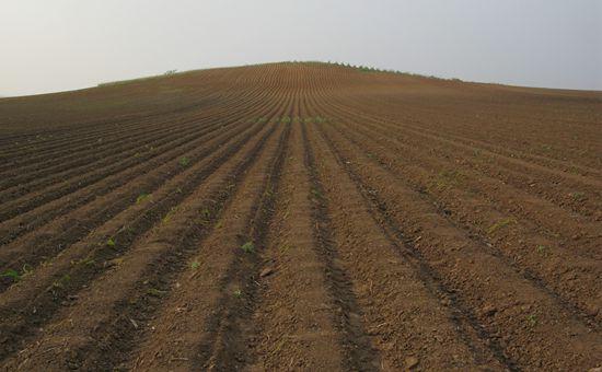 湖北发布《湖北省土壤污染防治行动计划工作方案》
