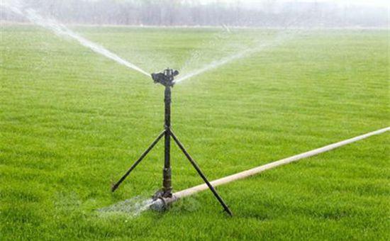 安徽:要全力做好农业抗旱浇灌
