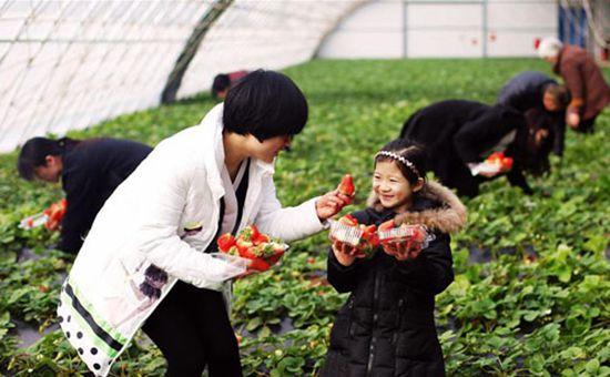农业部鼓励闲置宅基地发展休闲农业