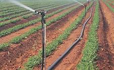 带动中国农业经济发展:2017中国温室及节水灌溉展即将举行