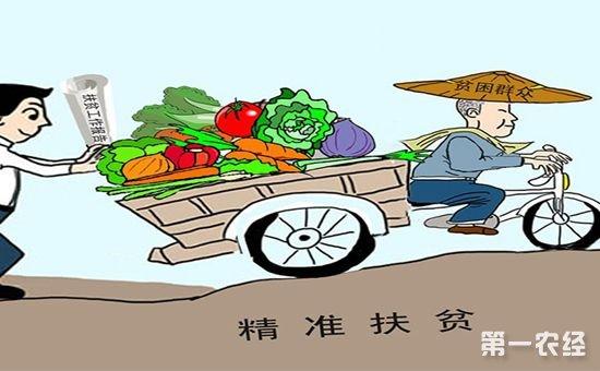 农业部加快部署定点扶贫工作