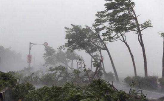 台风减弱离境 福建遭暴雨袭击