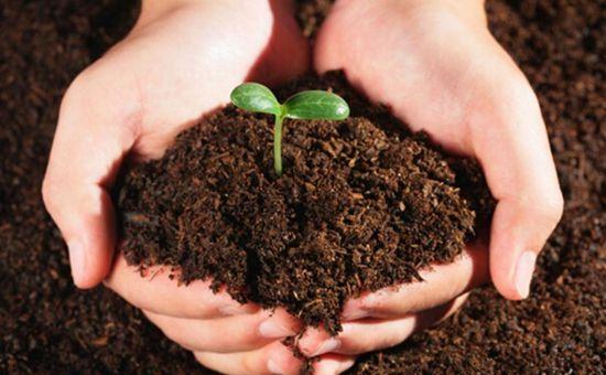 广西下发关于做好污染地块土壤环境管理信息系统应用的通知
