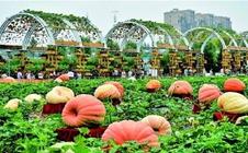 2017长春农博会将于近期举行,推动我国农业大发展