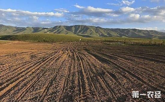 农村土地下轮承包期或调整 将有几类农民无法分到土地