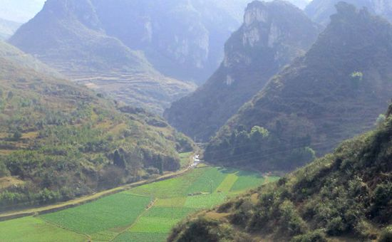 <b>贵州:打造特色现代农业产业园</b>