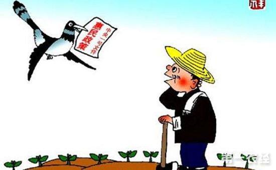 想要领取补贴?这里有最佳农业补贴领取方法大全