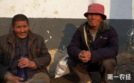 高龄农民工的两难选择:留城还是返乡?