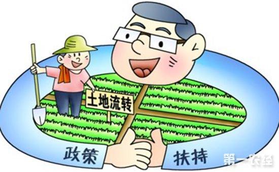 全国农村确权登记已完成80% 承包地流转比例达35.1%