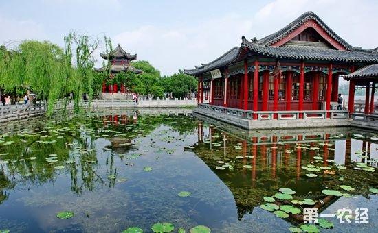 """山东济南:做大做强""""文化旅游目的地""""品牌"""