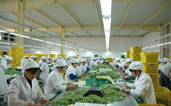 <b>哈尔滨:大力发展农产品精深加工业</b>