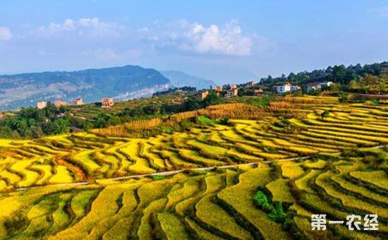 陕西汉中:乡村旅游促进绿色发展