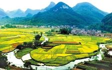 盘锦:宜居乡村建设换了新面貌 休闲农业与乡村旅游开创新局面