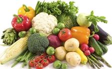 博湖县:鲜食蔬菜烘干车间成为当地村民致富法宝