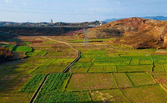 农村耕地再添新补贴 快来看看要如何领取