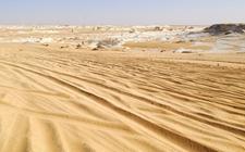 <b>埃及开垦荒漠扩大可耕地面积的计划得到中曼水井项目支持</b>