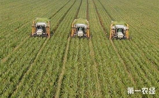 2018年这些农民将能领取到更多的补贴