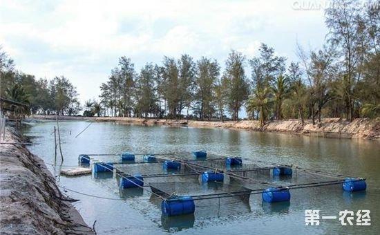中国连环湖生态鱼食文化高峰论坛在黑龙江举办