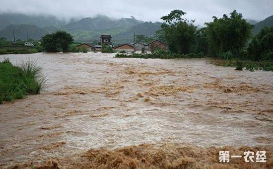 今年汛期抗洪不利的这些人将被问责