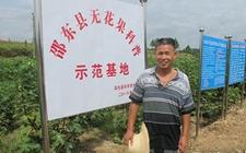 邵东无花果科普示范基地主人杨震找到了致富门路