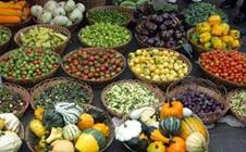 第十八届中国绿色食品博览会上,京津冀企业龙头首次组团亮相