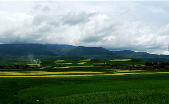 青海:矛盾所在改革所向 积极农牧业供给侧结构性改革