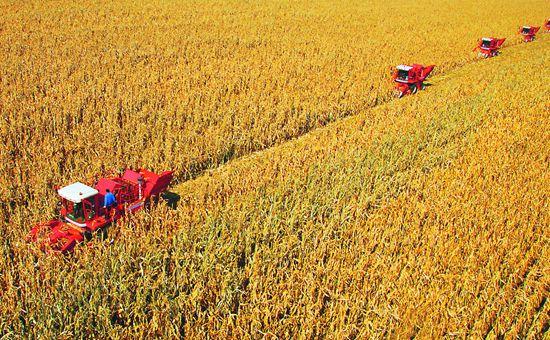 2018年开始这些农业领域将被国家重点扶持!