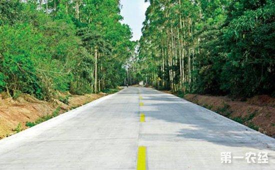 """山东:最早实现公路""""村村通"""" 近24万公里马路迎来农村崭新面貌"""