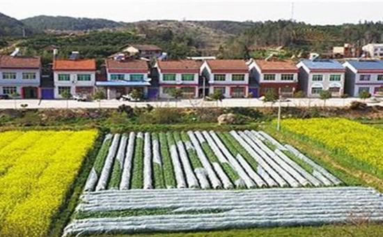 河北:稳步推进集体产权制度改革